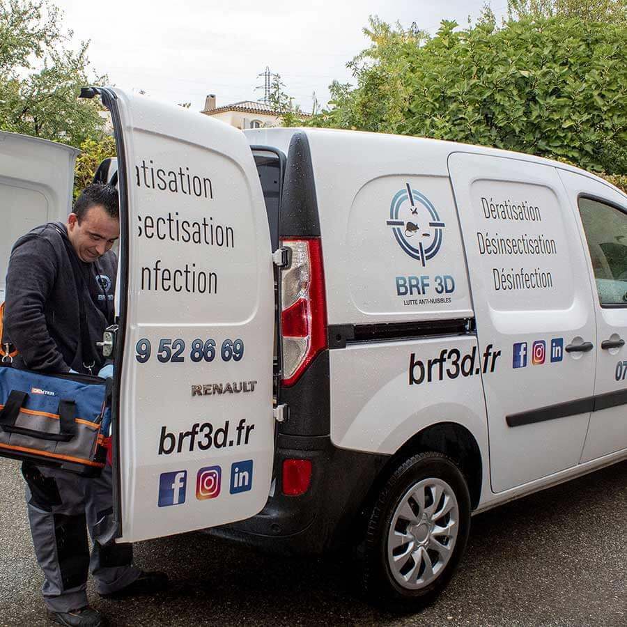 BRF 3D Marseille rat cafard désinsectisation dératisation équipe intervention discrète